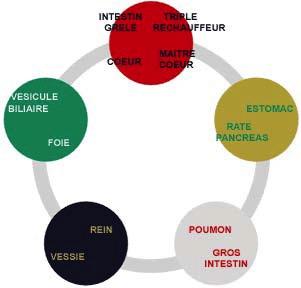 Correspondance des cinq éléments