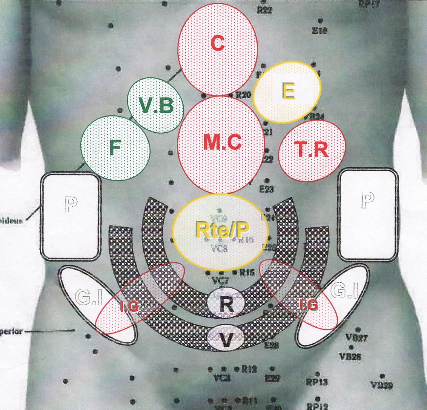 Préférence ZONES REFLEXES SELON MASUNAGA | Tao et Spiritualité LH29