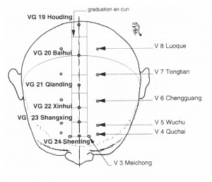VG19-24