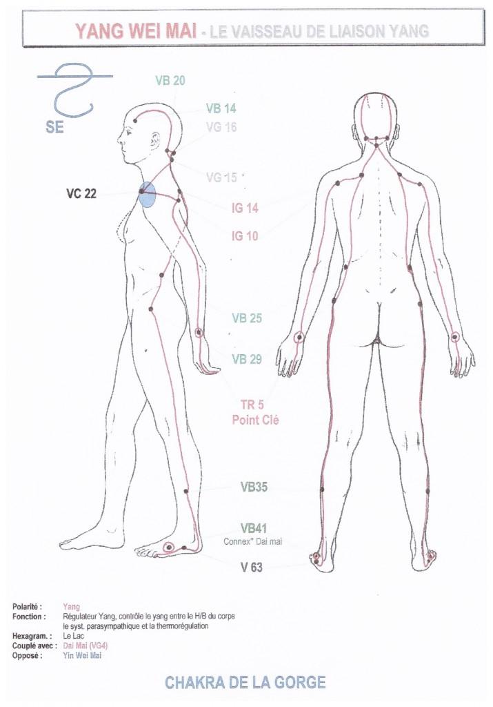 yang-wei-mai